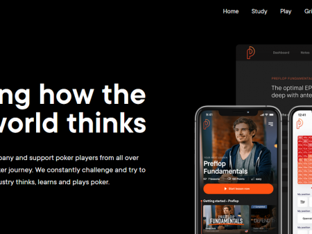 14 Best Poker Course for 2021